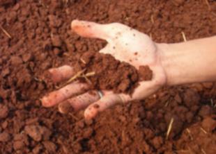 Определение типа почвы на участке (часть 1)