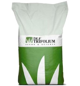Смесь семян «Робустика» (DLF Universal Robustica)