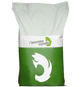 Смесь семян «Для Быстрого Озеленения»