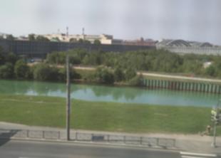 Две реки в СПб стали зелёными