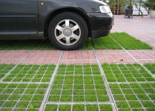 Эко-парковка – дышится легко!