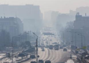 Экологическая тревога в Москве
