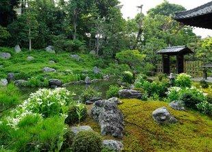 Японские газоны: восточная эстетика