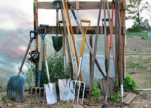 Какой инвентарь нужен для ухода за газоном?