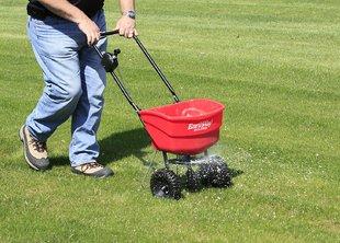 Когда удобрять газон