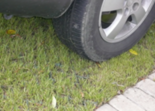 Не паркуйтесь на газонах!