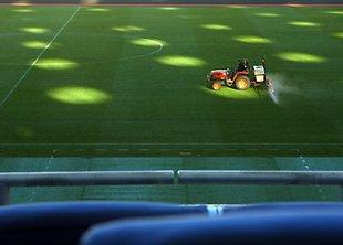 На стрижку газона на «Олимпийском» ежемесячно уходит 300 тысяч гривен