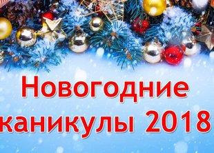Новогодние каникулы компании