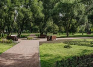 Обновили Пионерский сад