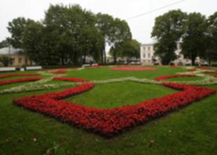 Петербуржцам предложили оценить чистоту своего района