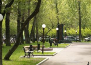 Проект «Культурной столице - ухоженные парки»!