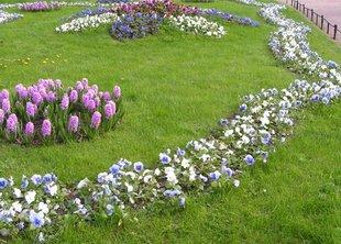 Садовники города подстригли свыше 6 тысяч гектаров газонов