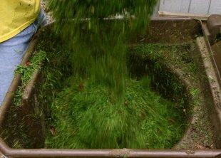 Утилизация скошенной травы: мульчирование