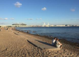 Все пляжи СПб непригодны для купания