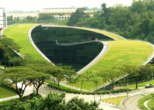 «Зеленая архитектура» – будущее городов