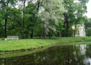 Жители Пушкин требуют вернуть бесплатный вход в парки