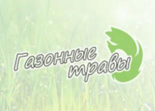 Васильевский остров построил «общественные туалеты» для собак